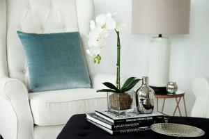 Velvet Cushions on Upholstered Arm Chair