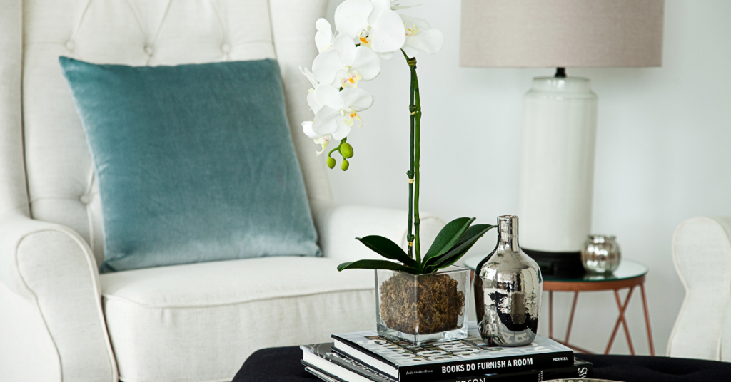 5 Best Vases For Your Home