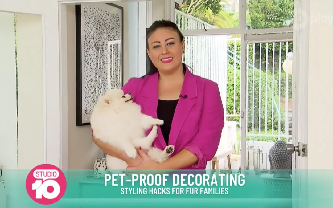 Studio 10 – Making Your Home Pet-Friendly